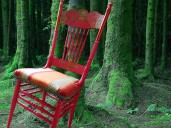 painted-forest-chair-no-text